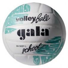 Мяч волейбольный GALA School